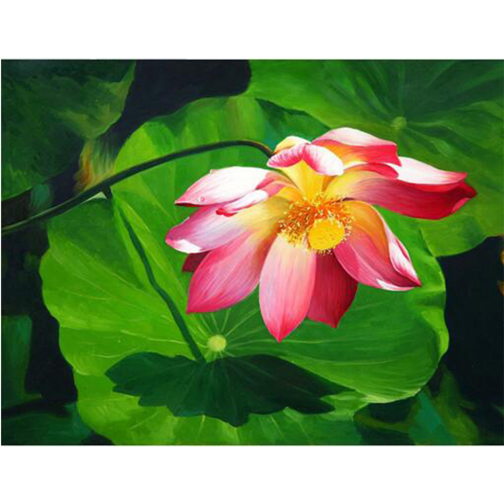 5d Diamond Diy Painting Lotus Flowers 5d Diamond Mosaic Rhinestone