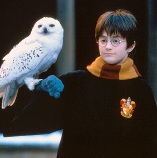 real feather harry potter barn owl 50cm long handmade craft best