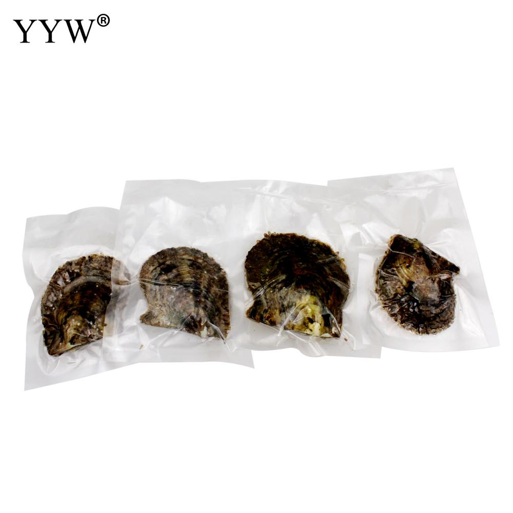 YYW High Grade Round Akoya Cultured Sea Pearl Oyster Beads 9-10mm Potato Pearl Accessories Beads Mussel Shell Pearls Oysters