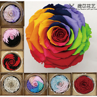Ecuador Imported Roseamor Giant Immortal Rose 10+cm Monochromatic Two color Three color Valentine's Day Christmas