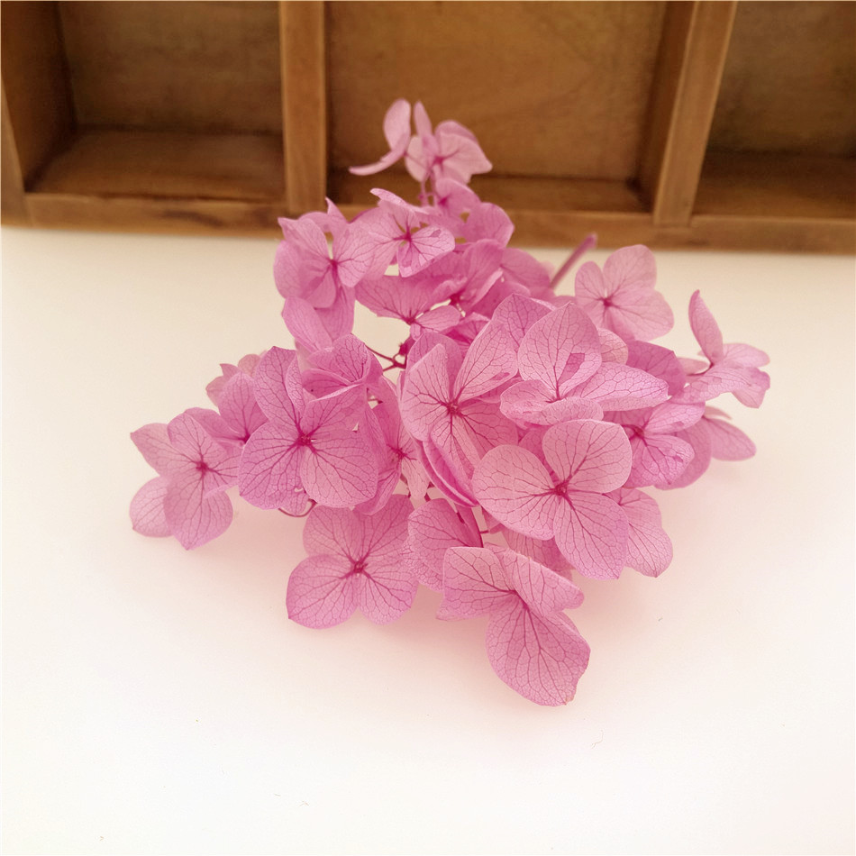 200pieces Pink Purple Color 522740mm Box Small Leaf Hydrangea