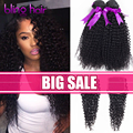 7A Peruvian Kinky Curly Virgin Hair With Closure Rosa Hair Products 3 Bundles With Closure Kinky Curly Virgin Hair With Closure