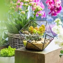NCYP Succulent Plant Geometric Glass Terrarium Pastoral Style Handmade Flowerpot Floor Bowl Shape