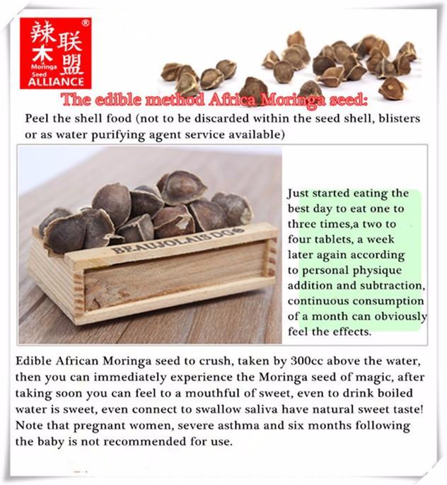 New Arrival Africa India Moringa seed Health food 100gram