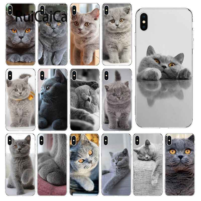 Ruicaica British Shorthair cat Smart Cover Shell Transparente Phone Case para iPhone 5 8 7 6 6 S Plus 5S SE XR X XS MAX Coque Shell