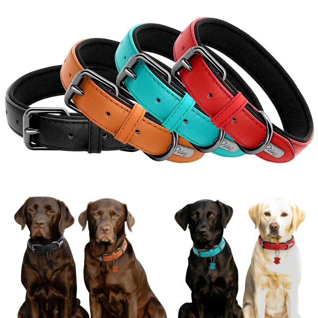 Draft – Real Leather Dog Collar Custom Padded Dog ID Collars Dog Accessories For Small Medium Large Dogs Pitbull Bulldog