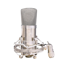 ISK BM 800 Condenser Microphone Professional Recording Microphone Music Create Broadcast And Studio Microphone OD S