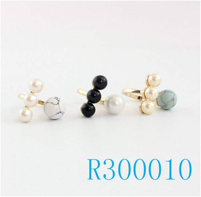 R300010
