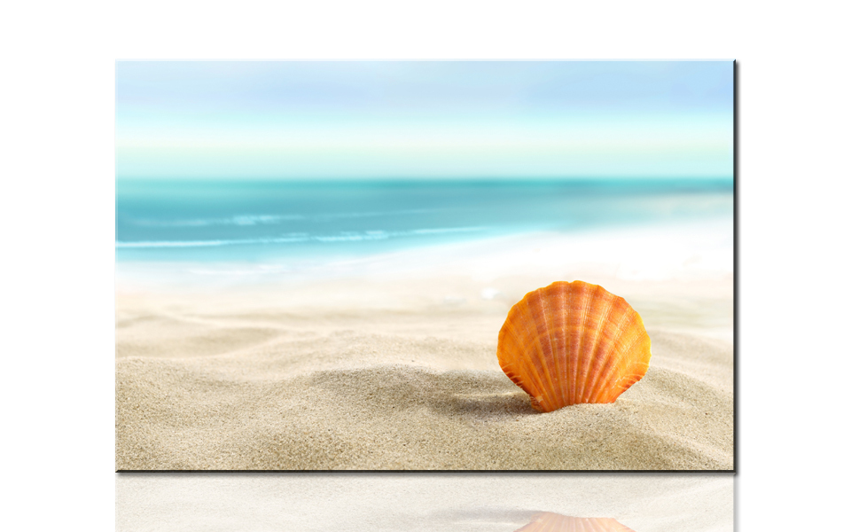 S733 Dreamy Beach And Shell, Large HD Canvas Print