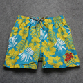 New arrive Turtle Design Mens Shorts Surf Board Shorts Summer Sport Beach Homme Bermuda Short Pants Quick Dry Silver Boardshorts