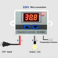 W3001 Digital Control Temperature Microcomputer Thermostat Switch Thermometer New Thermoregulator  12/24/220V Temperature Instruments     -