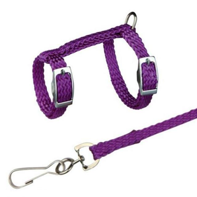 4 Colors Adjustable Nylon Harness Collar Set with Lead Leash for Small Animal Ferret Rat Hamster Rabbit Bunny Squirrel Guinea