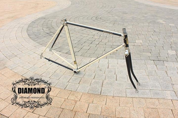 Lug Frame Dead Fly Bike / Road Bike City Bike Frame / Reynolds Frame Chrome Molybdenum Steel Frame Can Be Customized