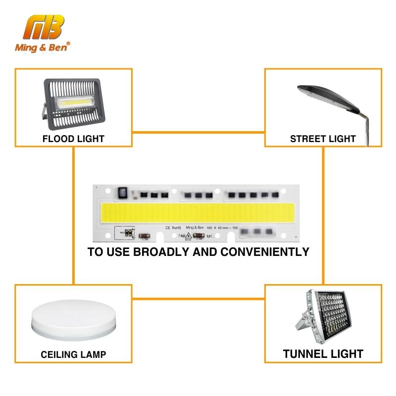 30W 50W 70W 100W 150W 220V 110V IP65 Smart IC - Жарықтандыру керек-жарақтары - фото 4