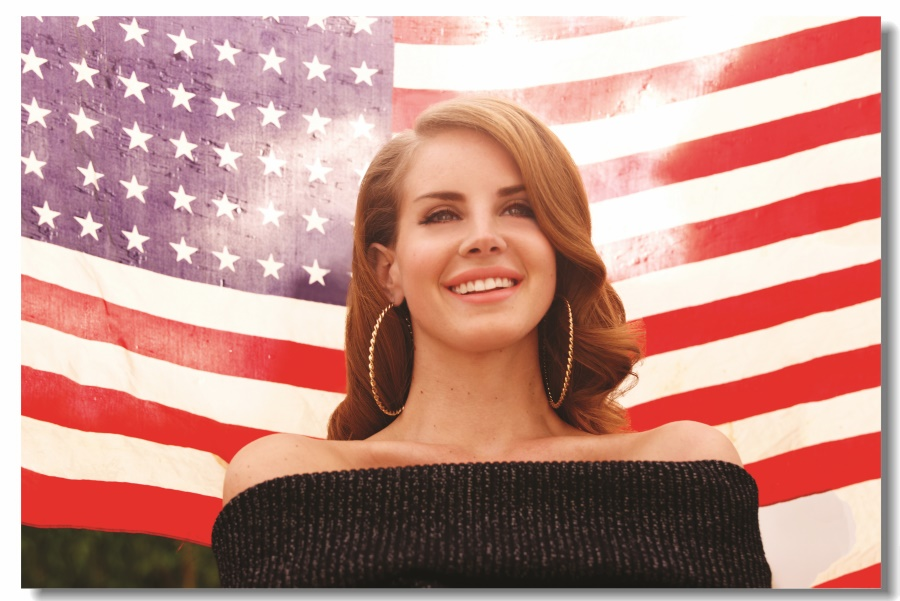 Custom Canvas Wall Decals Lana Del Rey Usa Flag Poster Lana Del Rey Wallpaper Sexy Singer Star Stickers Mural Decorations 0297 Wall Stickers Aliexpress