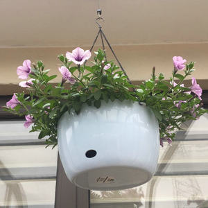 Image 3 - Di plastica Appeso Cesto di Fiori Vaso di Supporto Con La Catena Succulente Piante in Vaso Rotondo di Figura Variopinta di Giardinaggio In Vaso Decorazione Della Casa