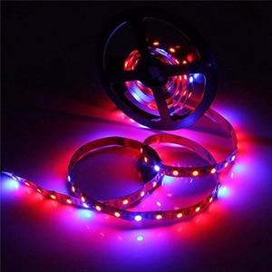 Image 3 - Lusine de LED élèvent des lumières 5M SMD 5050 DC12V LED Flexible élèvent la lumière de bande pour le légume de plante hydroponique de serre