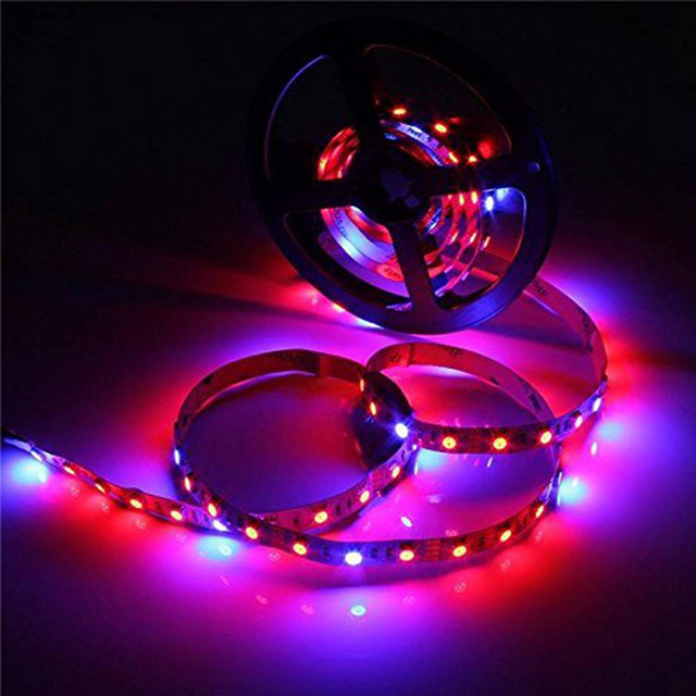 LED Plant Grow Lights 1M 2M 3M 4M 5M SMD 5050 DC12V Flexible LED Grow Strip Light for Greenhouse Hydroponics Plant Vegetable
