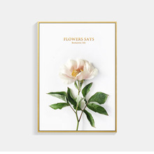Nordic Poster Canvas Art Green Plant Leaf Pints Pink Round Flower Rose Posters And Prints Gold Letter Cuadros Unframed