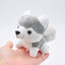 Cute Husky Pup Plush Toy