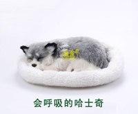 Huskie Siberian Husky Pampered Petz Pet Mate Breathing Dog Cute Toy Sleeping Pet Emulational Mini Vivid