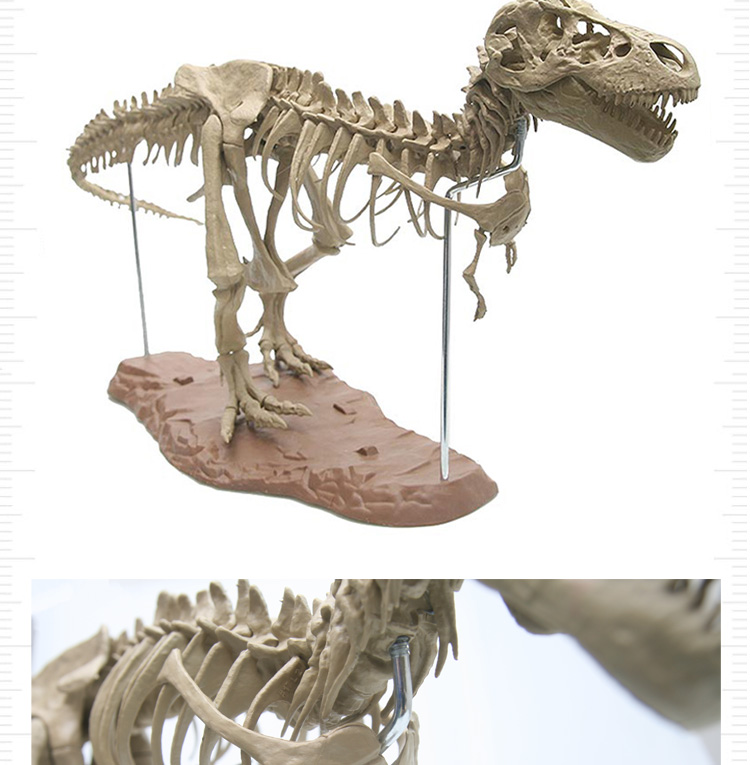 HTB1c0UcX.D1gK0jSZFGq6zd3FXaH Large Assembly Dinosaur Fossil Puzzle (without box)