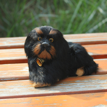 Simulation Lifelike Imitated Chow Chow Dog Model Decorative Dog