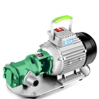 Power 220V/380V WCB Protable Gear Oil Pump with Motor WCB 30 WCB 50 Cast Iron Fuel Transfer Pump for WVO WMO