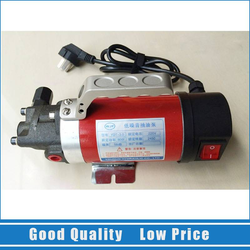 220V 2.5L/min Hydraulic Oil Transfer Small Electric Pump Fuel Pump ac mini gear oil pump 4l min 220v fuel oil pump cast iron yd 2 5