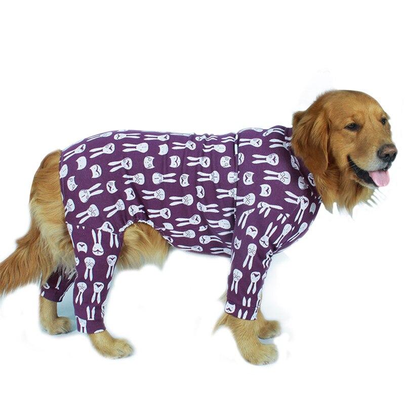 Golden retriever Dog coat (4)