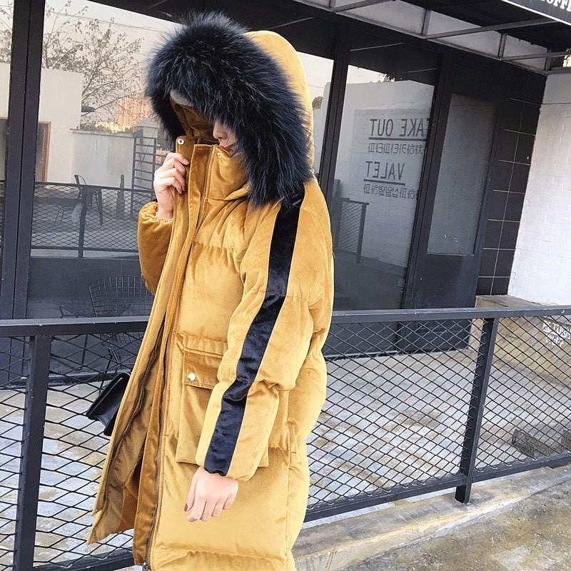 yellow Femmes Manches Manteau Rembourré Pain souris Coton Long Parkas Chauve Russie Blue Mode Nouvelle Pj218 À Velours Color Vestes champagne De Chaud Épais Fourrure Capuchon wPCBq5