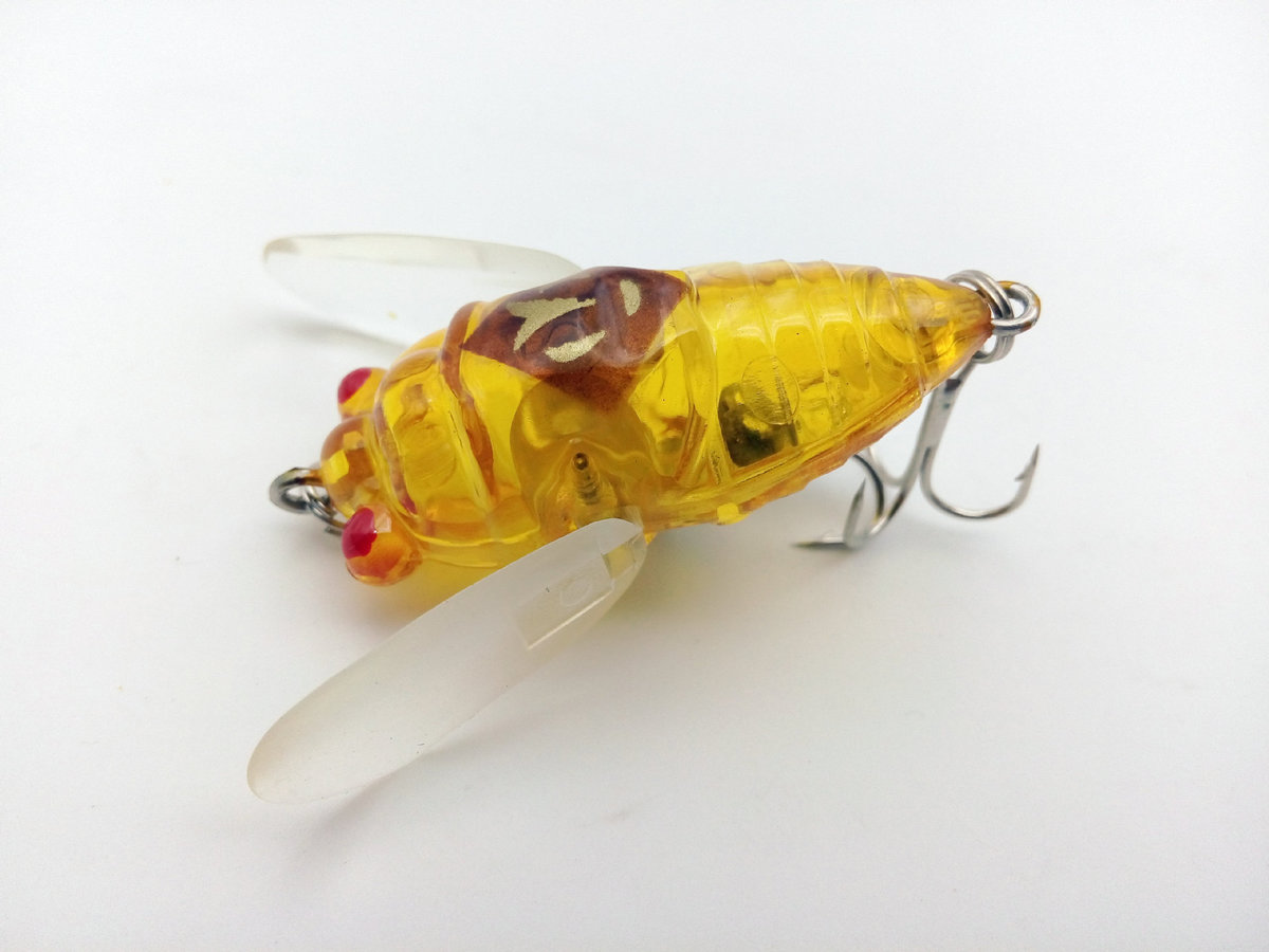 6g 40mm Cicada Bait Isca Artificial Ocean Beach Fishing Lures Wobblers Lifelike Popper Floating Topwater Insect For Sea Lake in Fishing Lures from Sports Entertainment