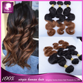 Sunny grace Ombre Hair Extensions Brazilian Body Wave Two Tone Color 100% Human Hair Weaves T1B/6 2pcs/lot