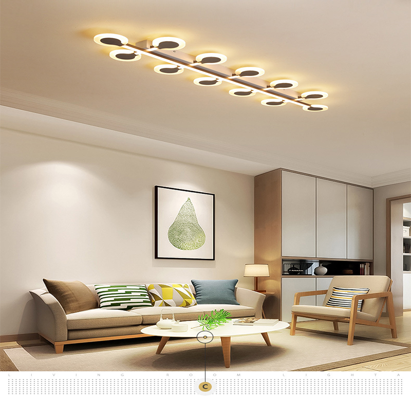 Led ceiling lamps Creative Flower Aisle Corridor Bedroom Living Room Dandelion Indoor Lighting RC Dimmable Pendant light