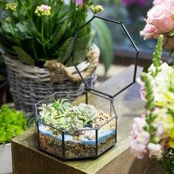 Nowoczesne Octagon bukiety na stół doniczka sukulenty sadzarka paproci Moss rośliny pole ogród wyświetlacz Bonsai geometryczne szklane Terrarium prezent