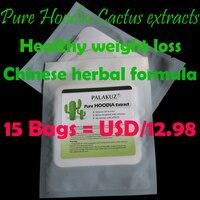15 Zakken, Pure Hoodia Cactus extracten afslanken buik patch, Chinese kruiden formule Gezond gewichtsverlies Lichaam Vormgeven dieet pad