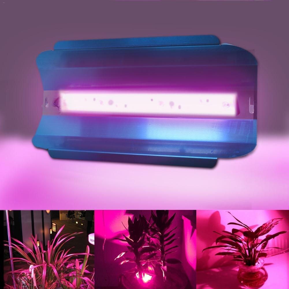 30 w 50 w LED Phyto Projecteurs Haute Puissance COB LED Élèvent La Lumière Fitolampy IP67 Étanche 220 v Pour plante À Effet de Serre Hydroponique