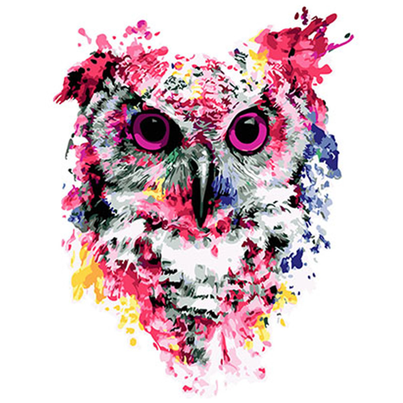 Colorful Owl Framed Pictures DIY Painting By Numbers DIY Oil Painting On Canvas Home Decoration Wall Art GX26136 40X50CM(China)