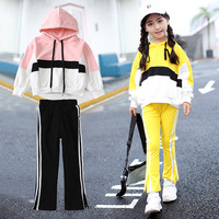 Girls Fall Clothing Set Kids Sport Outfits Twinset Children Casual Sweater Suit Child sweatshirt + Pants 2 Pcs Kids Tracksuit