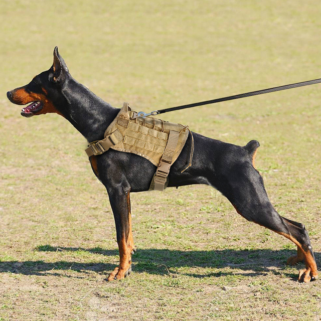 Military Tactical Dog Harness K9 Working Dog Vest Nylon Bungee Leash Lead Training Running For Medium Large Dogs German Shepherd 4