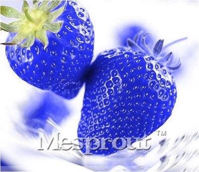 На Сал! 100 шт. синий семена клубники Fragaria Фрукты Семена для дома сад DIY редкие семена для Карликовые деревья мне #0010