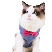 Free Shipping Cat Harness Pet Supplies  Products for Dog Rabbit Collar Tie Cats Pets QY0151