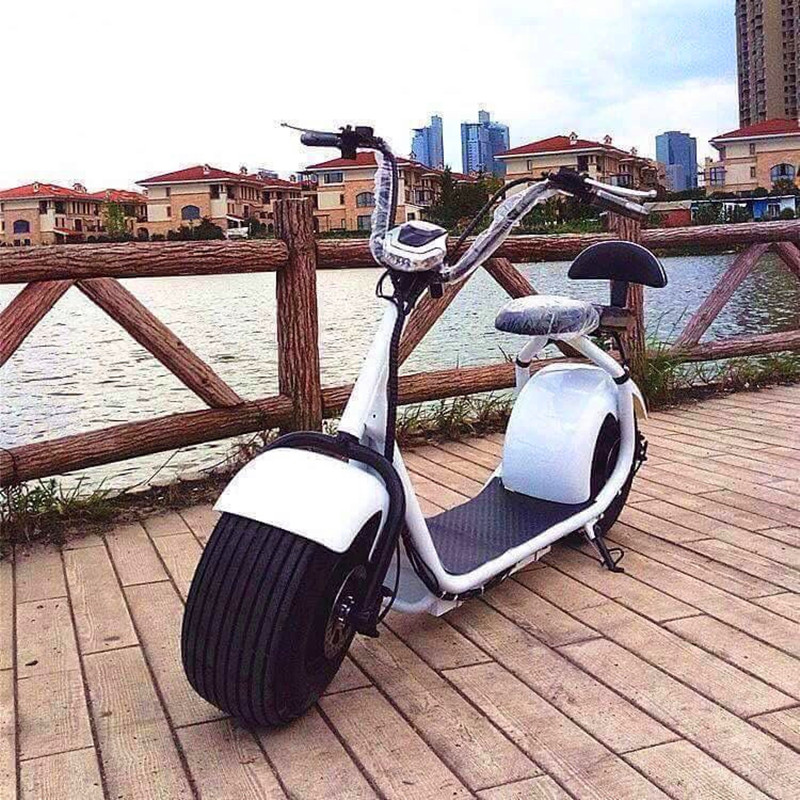 City moped Mobility Citycoco 1200W/1500W Brushless Adult halley Electric Scoote 2 wheel electric bike electric chopper fat tire ...
