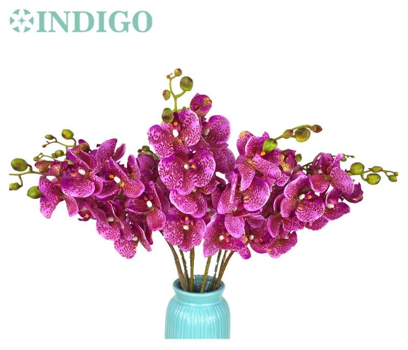 INDIGO-10 stks Luipaard Phalaenopsis Latex Coating Orchidee Real - Feestversiering en feestartikelen - Foto 2