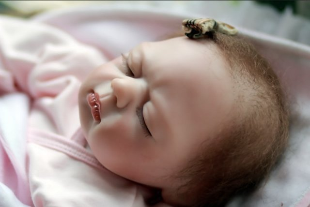 Free shipping TOP QUALITY 55cm  boy reborn baby doll/same quality as adora baby doll for kids' gift