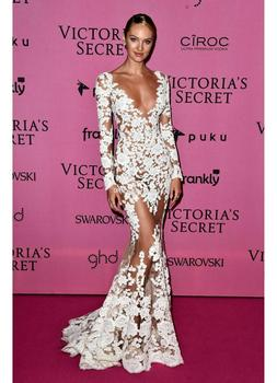 See Through 2019 Formal Celebrity Dresses Mermaid V-neck Long Sleeves Lace Sexy Long Evening Dresses Famous Red Carpet Dresses