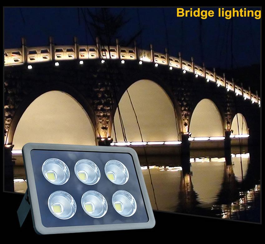 COB Floodlight-5