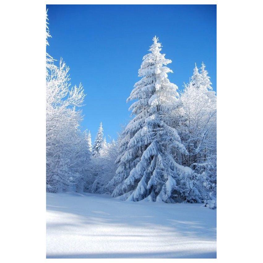 Vinyl 3x5ft Xmas Photography Background Studio Photo Props Backdrop, Blue sky + snow christmas background vinyl cosmic blue star wood new born photo studio xmas backdrop photography