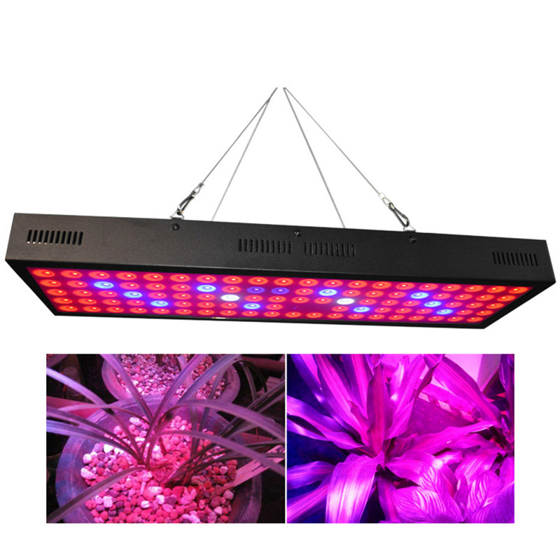 все цены на 300W Double Chips LED Grow Light Full Spectrum Grow Lamp with Rope Hanger for Indoor Greenhouse Hydroponic Plants Veg and Flower онлайн