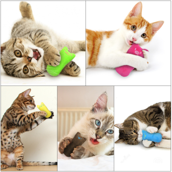 cat catnip toys